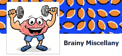 brainy miscellany image for link
